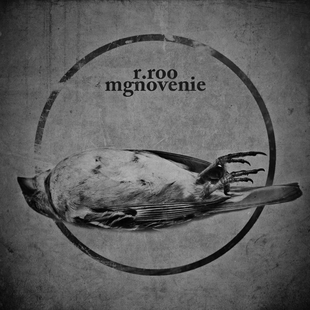 R.roo - Mgnovenie